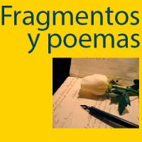 fragmentoswidget